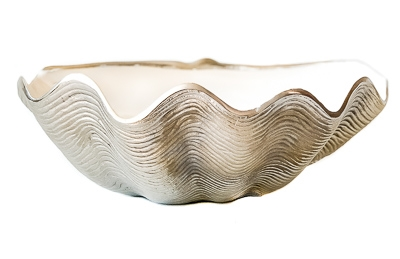 Silver Shell with White Enamel