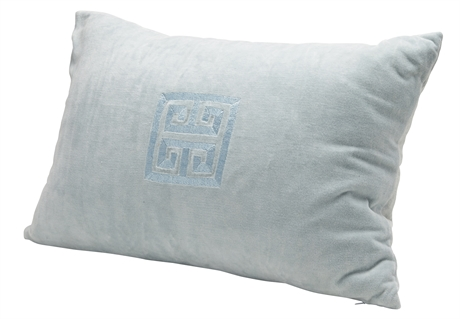 Cushion Baby blue Velvet