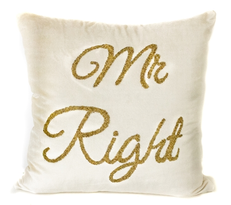 Mr Right Ivory Velvet Cushion