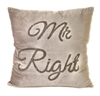 Mr Right Grey Velvet Cushion